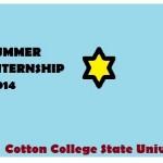 Summer Internship 2014